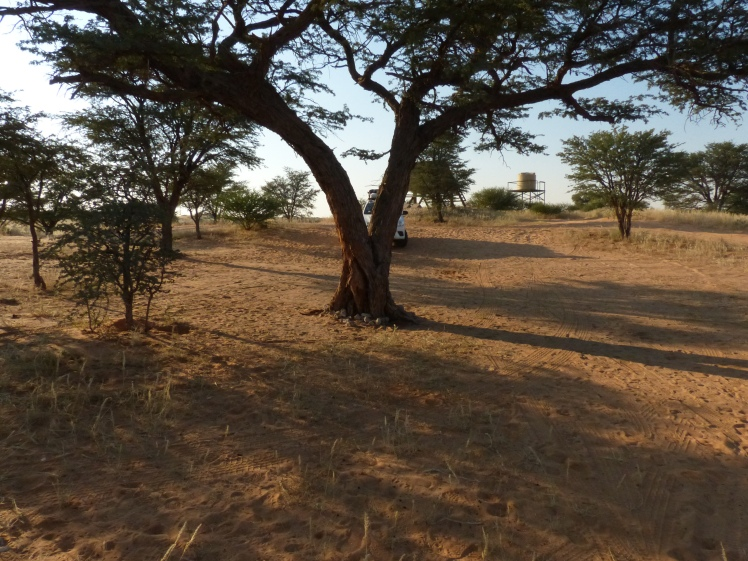 Rooiputs camp site no 5